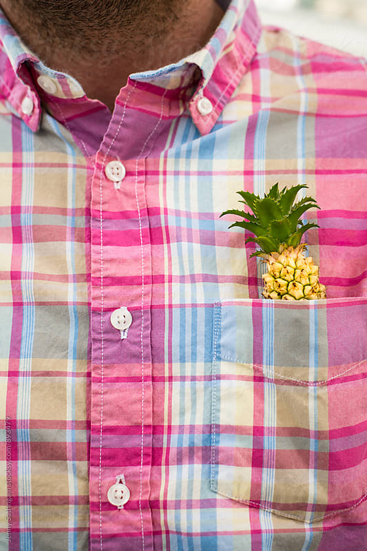 Baby Pineapple in Man's Plaid Shirt Pocket by Jenny Sathngam for Stocksy United