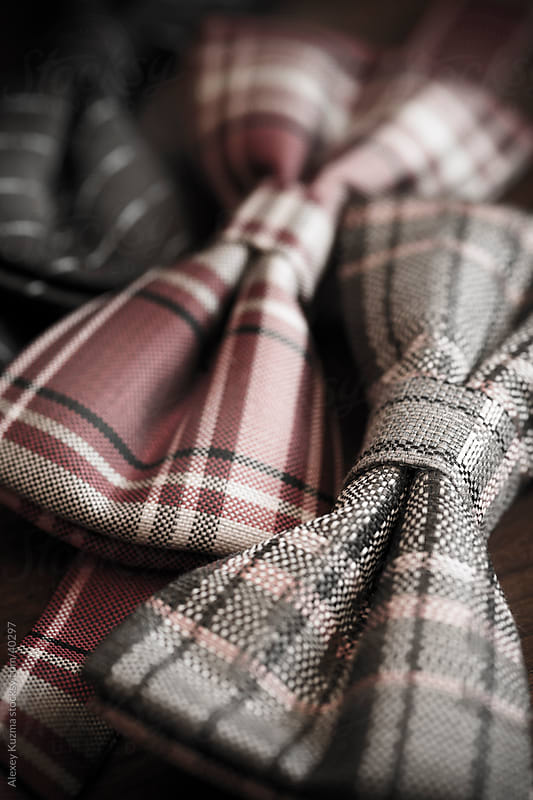 bow tie by Vesna for Stocksy United