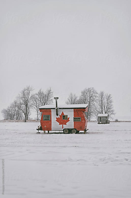 Maple leaf trailer by Preappy for Stocksy United