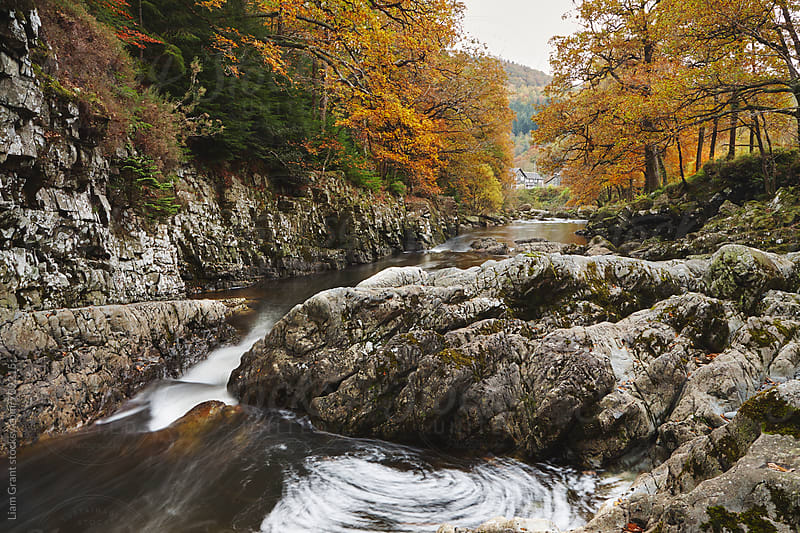 Afon Llugwy in Autumn. Betws y Coed, Wales, UK. by Liam Grant for Stocksy United