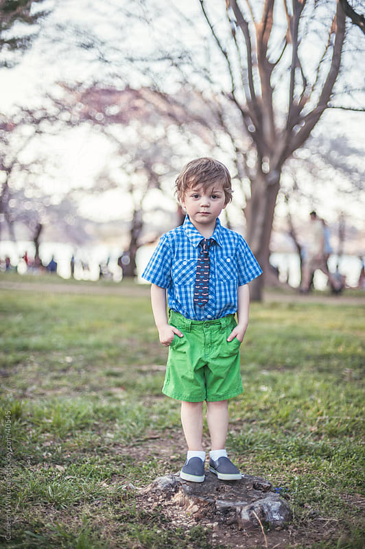 Little Boy Posing On A Tree Stump by Cameron Whitman for Stocksy United