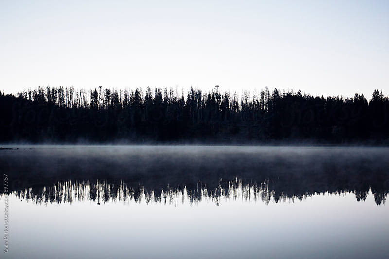 A tree line reflects like a mirror in a still lake on a foggy morning by Gary Parker for Stocksy United