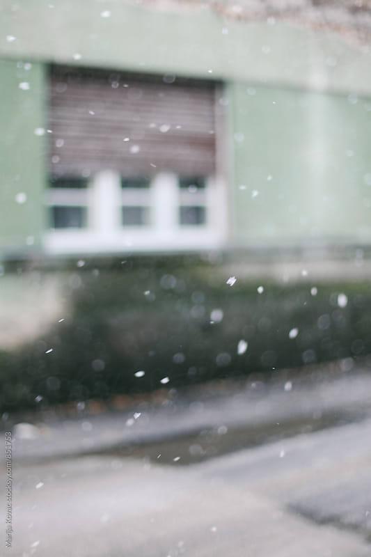 Snow  by Marija Kovac for Stocksy United