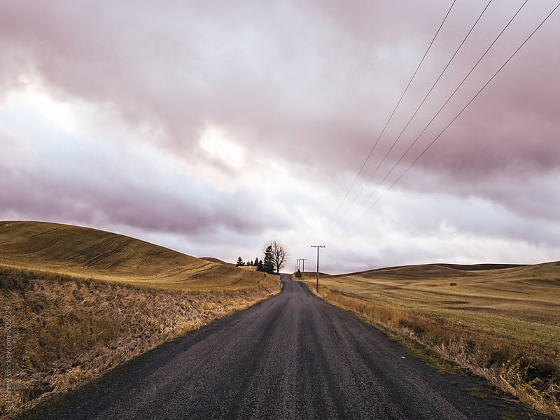 Long Country Roads by B. Harvey for Stocksy United