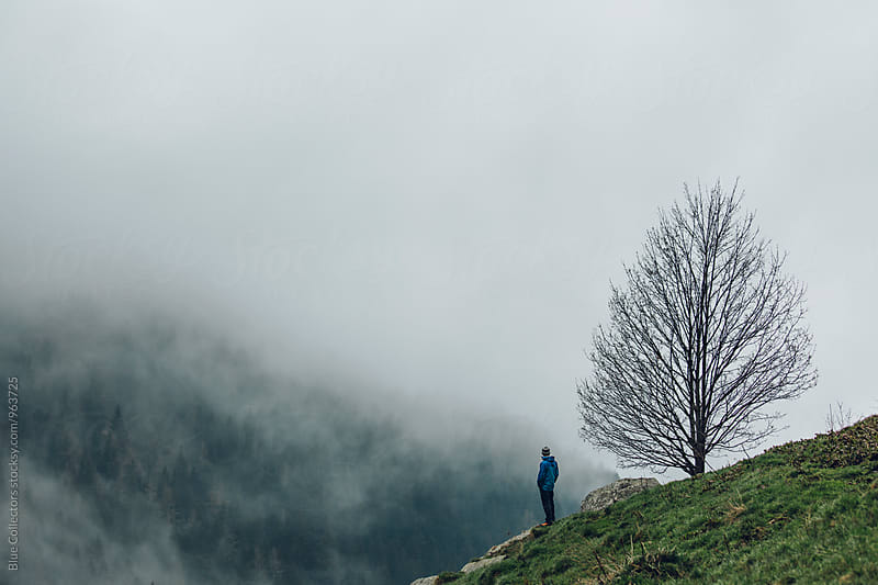 Male hiker overlooking beautiful foggy forest views beside the big tree by Jordi Rulló for Stocksy United