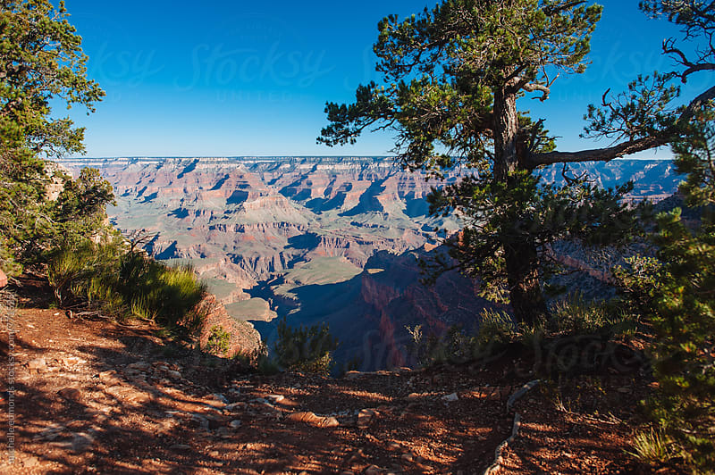 Grand Canyon Overlook by michelle edmonds for Stocksy United