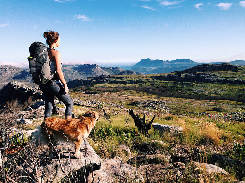 Female hiker and her dog on a mountain summit enjoying the view by Micky Wiswedel for Stocksy United