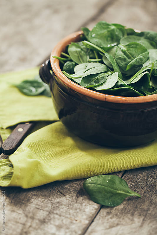 Baby Spinach  by Lumina for Stocksy United