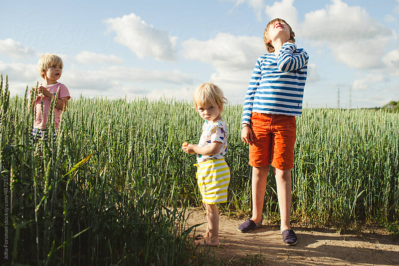 Three children pause their play in a green wheat field. by Julia Forsman for Stocksy United