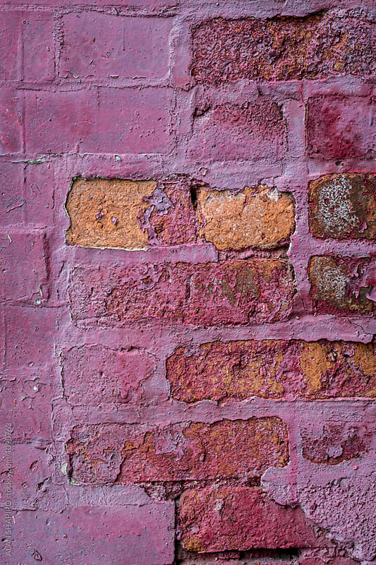 brick wall by alan shapiro for Stocksy United