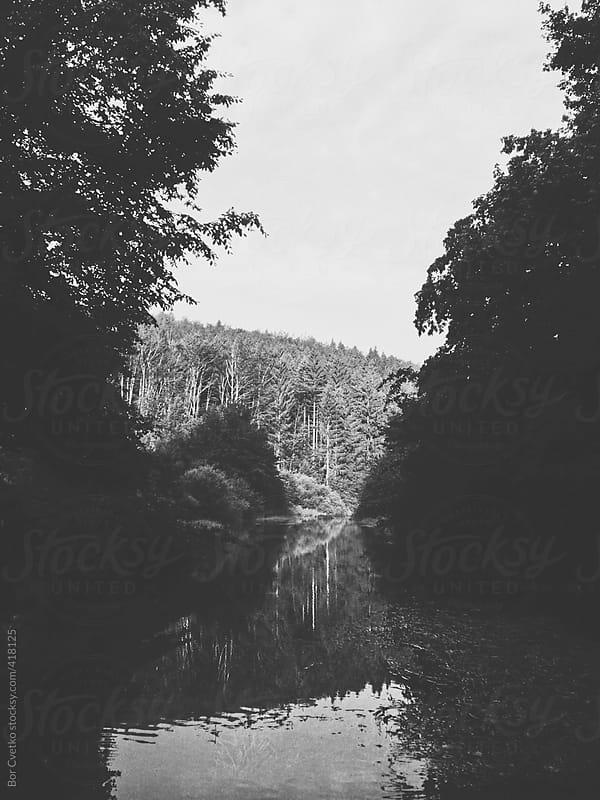 Black and white morning lake by Bor Cvetko for Stocksy United