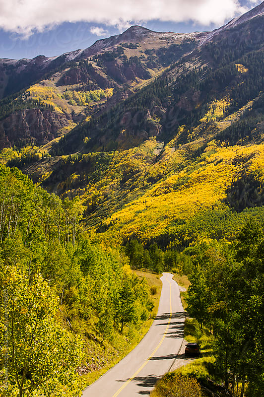 Fall Foliage in Colorado by Raymond Forbes LLC for Stocksy United