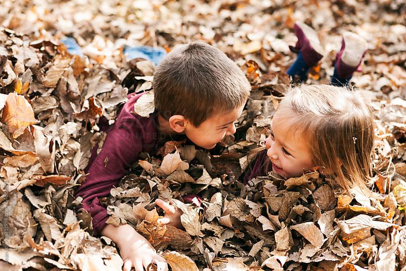 stock photo: kids in leaves