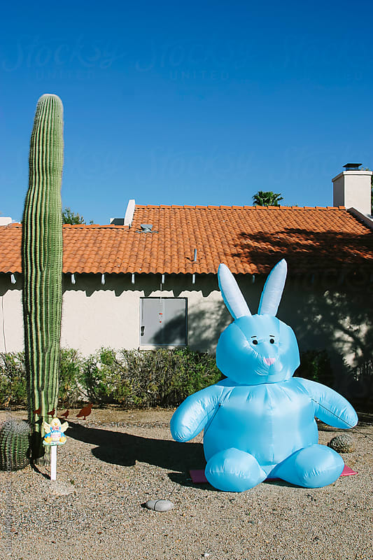 Easter Bunny and a Cactus by Raymond Forbes LLC for Stocksy United