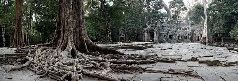 Ruins of Ta Prohm by Jason Denning for Stocksy United