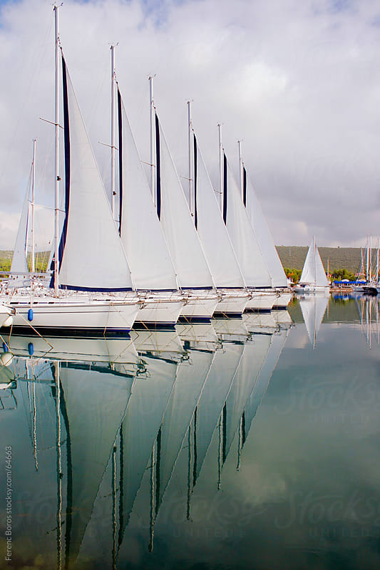 Yachts and open sails ligned up in marina by Ferenc Boros for Stocksy United