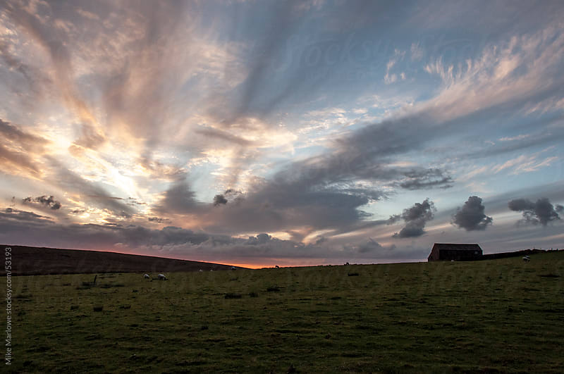 Derbyshire moors at sunset with sheep. by Mike Marlowe for Stocksy United