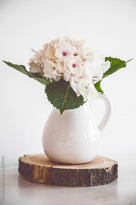Lovely Detail of Hydrangea by Alie Lengyelova for Stocksy United