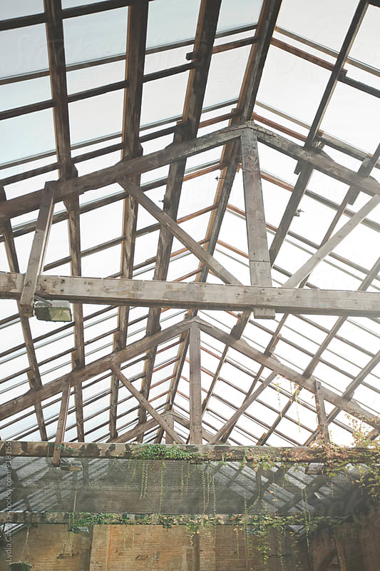 Old greenhouse by Lydia Cazorla for Stocksy United