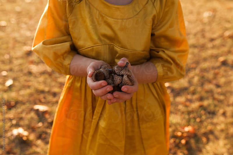 Close up of a young girl's hands holding a pile of acorns in the fall by Amanda Worrall for Stocksy United