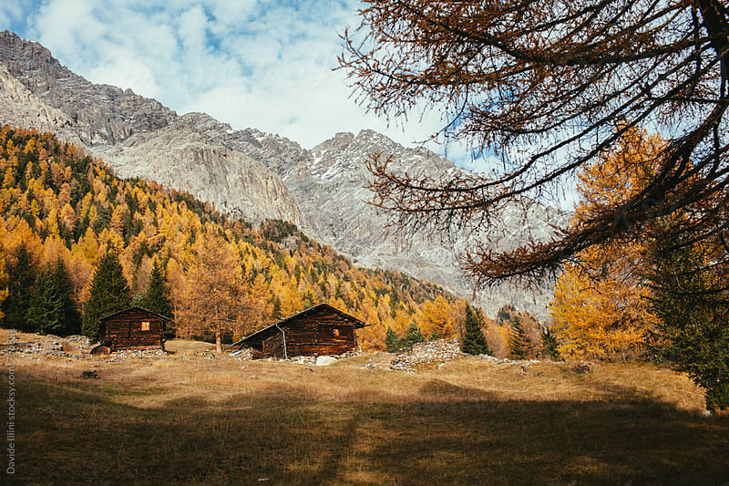 Autumn landscape in the mountains by Davide Illini for Stocksy United