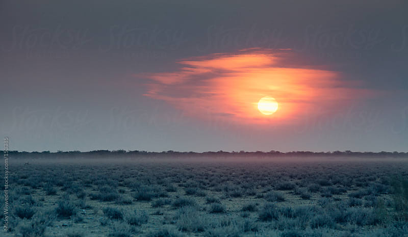 Sunset over a barren landscape by Micky Wiswedel for Stocksy United