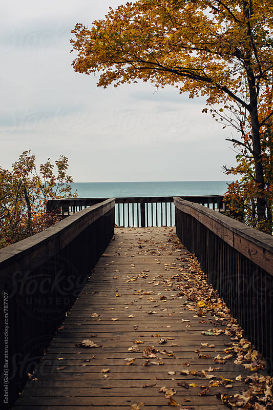 Boardwalk to a scenic view of a lake in the fall by Gabriel (Gabi) Bucataru for Stocksy United
