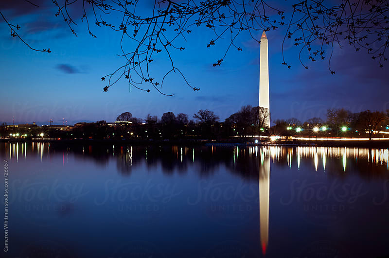 Washington Monument Reflecting In The Tidal Basin by Cameron Whitman for Stocksy United