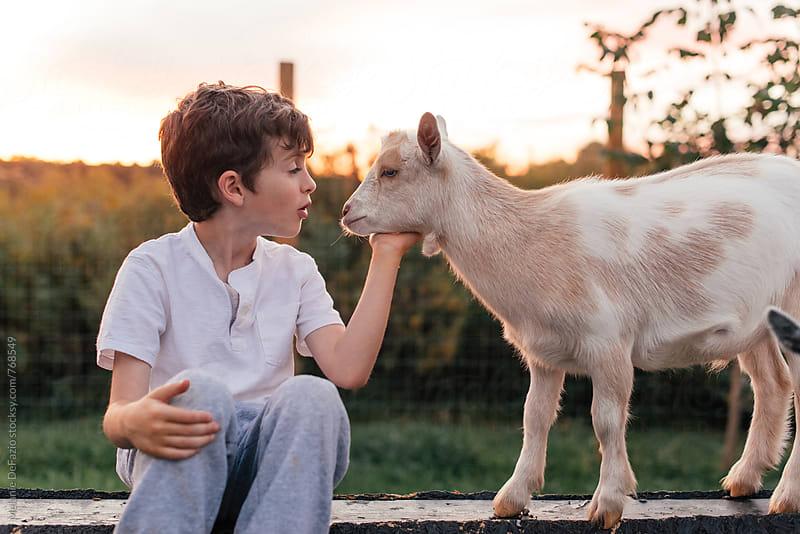 Boy and goats by Melanie DeFazio for Stocksy United