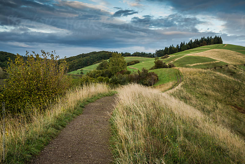 Path over Rolling Hills by Andreas Wonisch for Stocksy United
