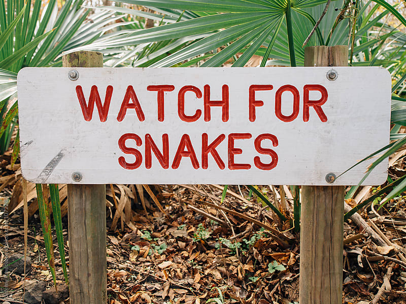 Hand painted sign warning of snakes by Jeremy Pawlowski for Stocksy United