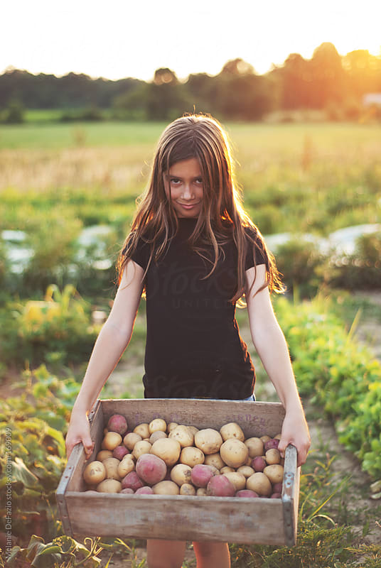 Digging potatoes by Melanie DeFazio for Stocksy United