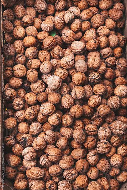 Walnuts  by Borislav Zhuykov for Stocksy United