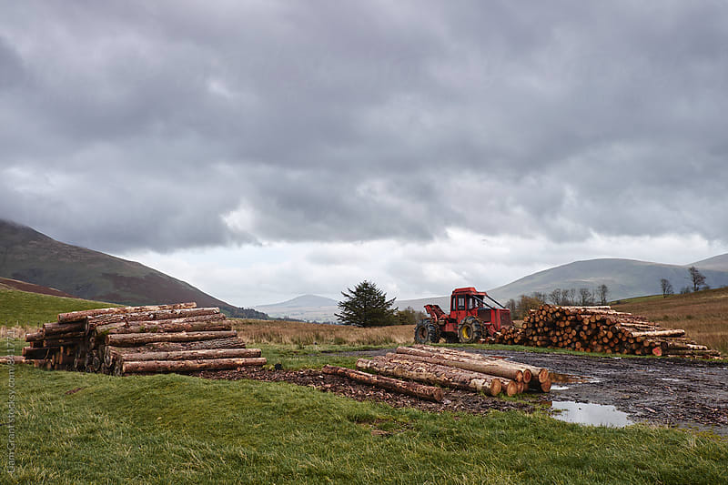Forestry machine and timber stack on mountainside. Cumbria, UK. by Liam Grant for Stocksy United