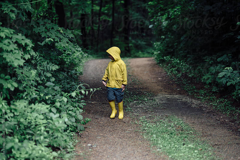 little boy on walk in a forest by Léa Jones for Stocksy United