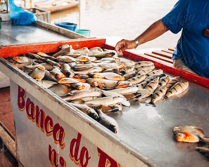 Fresh fish on sale near Amazon by Gabriel Tichy for Stocksy United