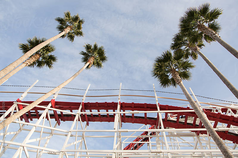 Palm trees and an old wooden roller coaster by Amy Covington for Stocksy United