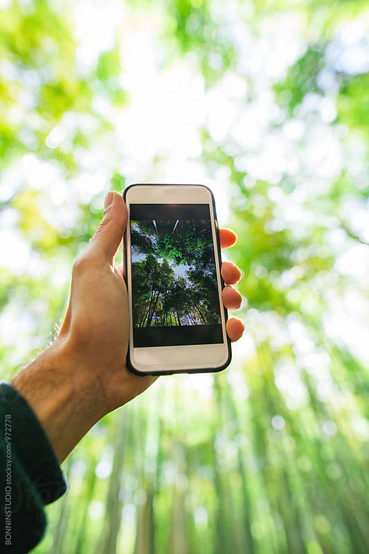 Man taking a photo with his smartphone of the bamboo forest. by BONNINSTUDIO for Stocksy United