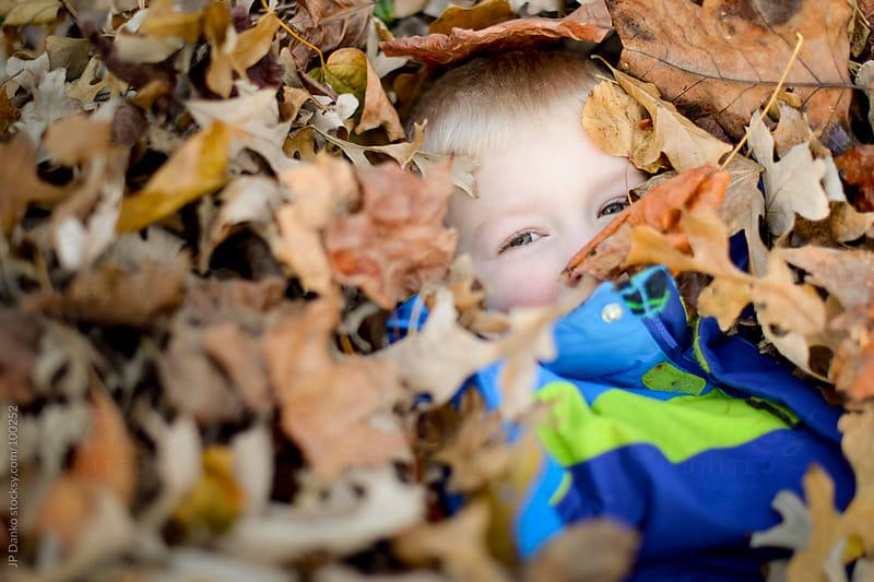 Little Boy Playing In Fall Leaves in Autumn by JP Danko for Stocksy United