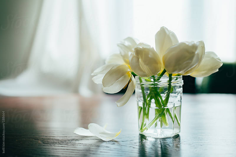 Tulips in a modest glass jar by kelli kim for Stocksy United