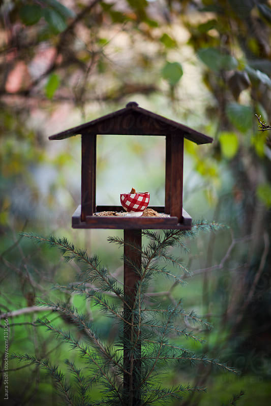 Nuts and peanuts butter on wooden house shaped bird feeder by Laura Stolfi for Stocksy United