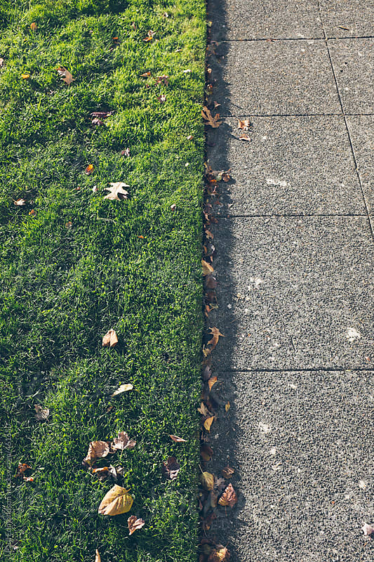 Sidewalk and grass in autumn by Paul Edmondson for Stocksy United