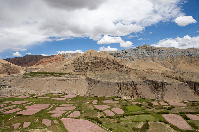 Agricultural fields in Upper Mustang. by Shikhar Bhattarai for Stocksy United