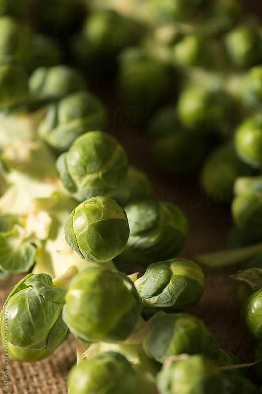 Brussel Sprouts on the Stem by Jeff Wasserman for Stocksy United