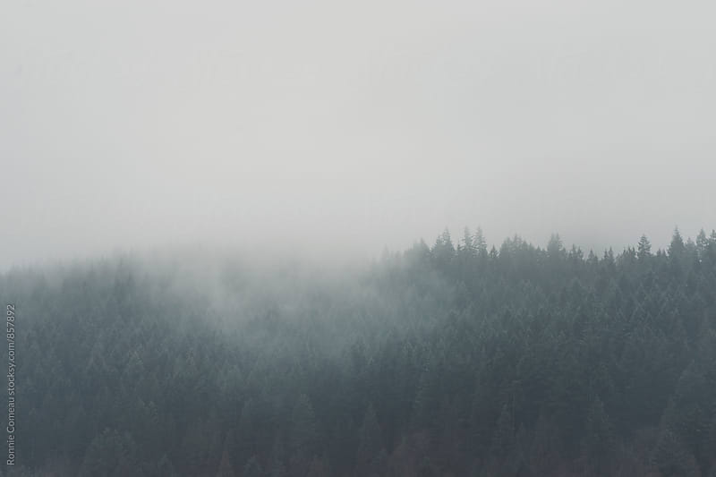 Misty Morning Mountains by Ronnie Comeau for Stocksy United