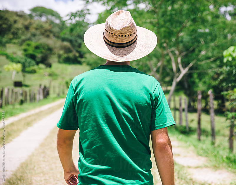Back view of a man with a straw hat walking on a path in the countryside by Alejandro Moreno de Carlos for Stocksy United