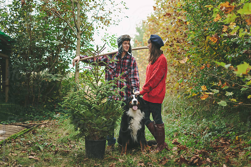 Couple and dog Bring Pine Tree  by HEX. for Stocksy United