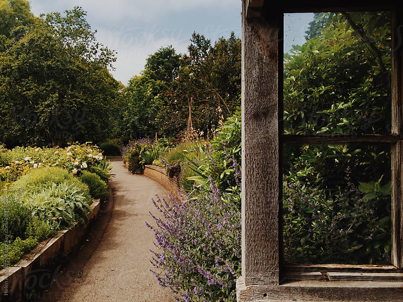 A gravel path and herbaceous beds in a garden. by Helen Rushbrook for Stocksy United