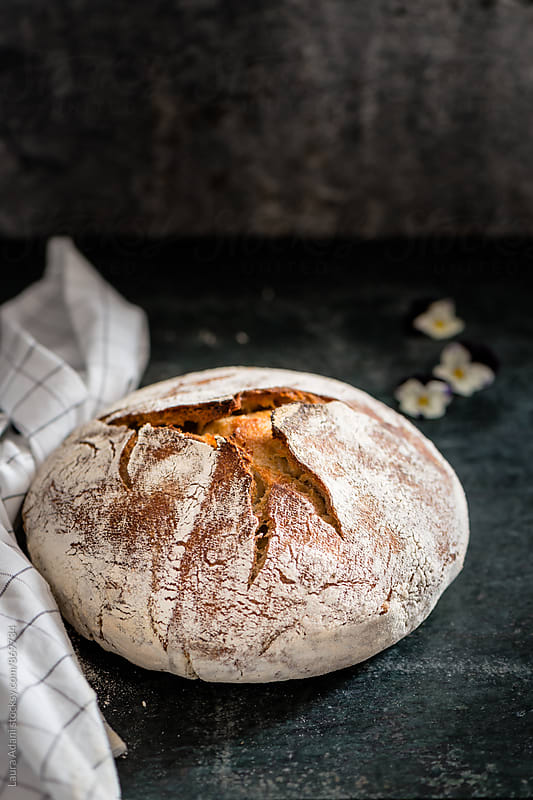 No-knead bread of whole grain by Laura Adani for Stocksy United