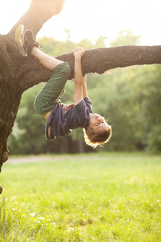 Boy playing on a tree. by Mosuno for Stocksy United